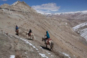 Mustang Trail Race: Local transport