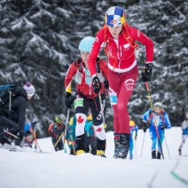 ISMF World Cup SprintRace2019 Vertical race (10)