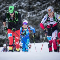 ISMF World Cup SprintRace2019 Vertical race (22)