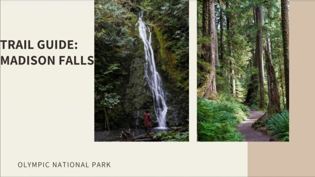 Trail Guide: Madison Falls in Olympic NP