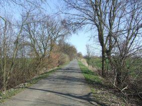 Oderbruchbahnradweg
