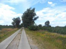 Weg bei Bahnitz