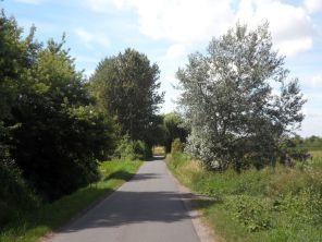 Der Radweg