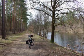 Das südliche Ufer des Havelkanal zwischen Schönwalde und Schleuse Schönwalde.
