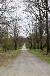 Der Hahnebergweg