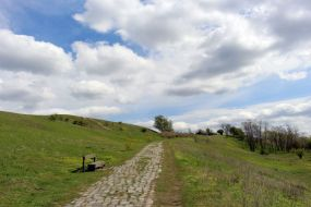 Weg zur Kuppe des neuen Hahneberg