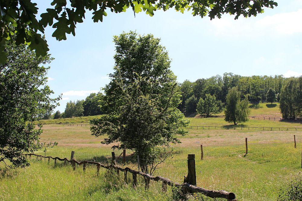 Am Eingang zum Gelände 'Naturschutz- und Natura 2000-Gebiet Fort Hahneberg'