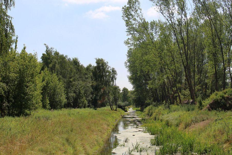 Nieder Neuendorfer Kanal in Schönwalde