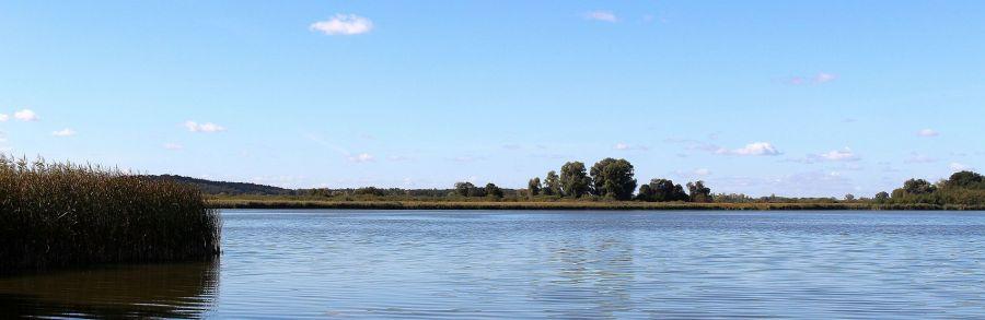 Am Rangsdorfer See