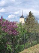 Die Kirche von Pausin