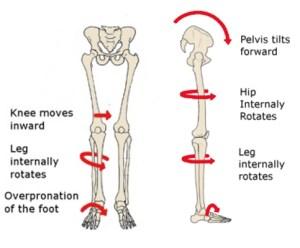 skeletoneffects