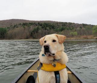 canoe access 9