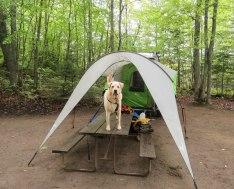june island pond camping 55