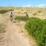mountain bike riders on single track trail