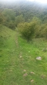 We followed a sheep path at the top of the valley and found our way back down to the main path.