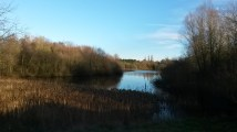 At Skylarks Nature Reserve, overlooking the reedbeds and wetland habitat.