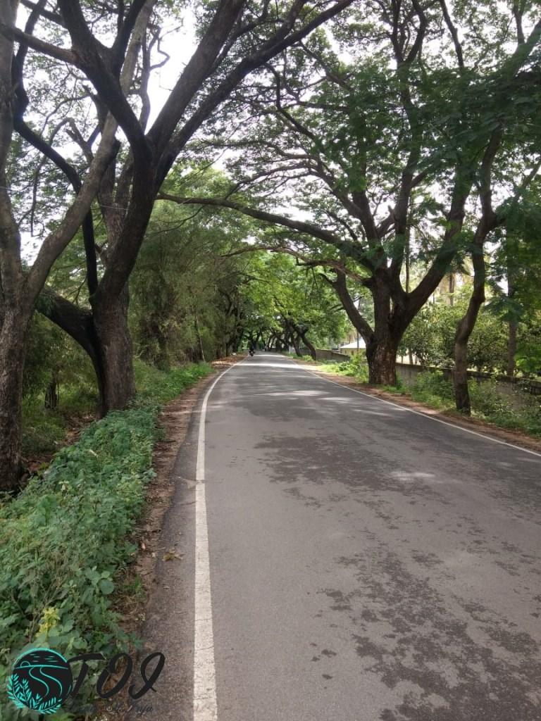 Bike Ride to Chunchi Falls from Bangalore