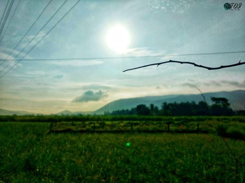 Mornings Near Shivanasamudra