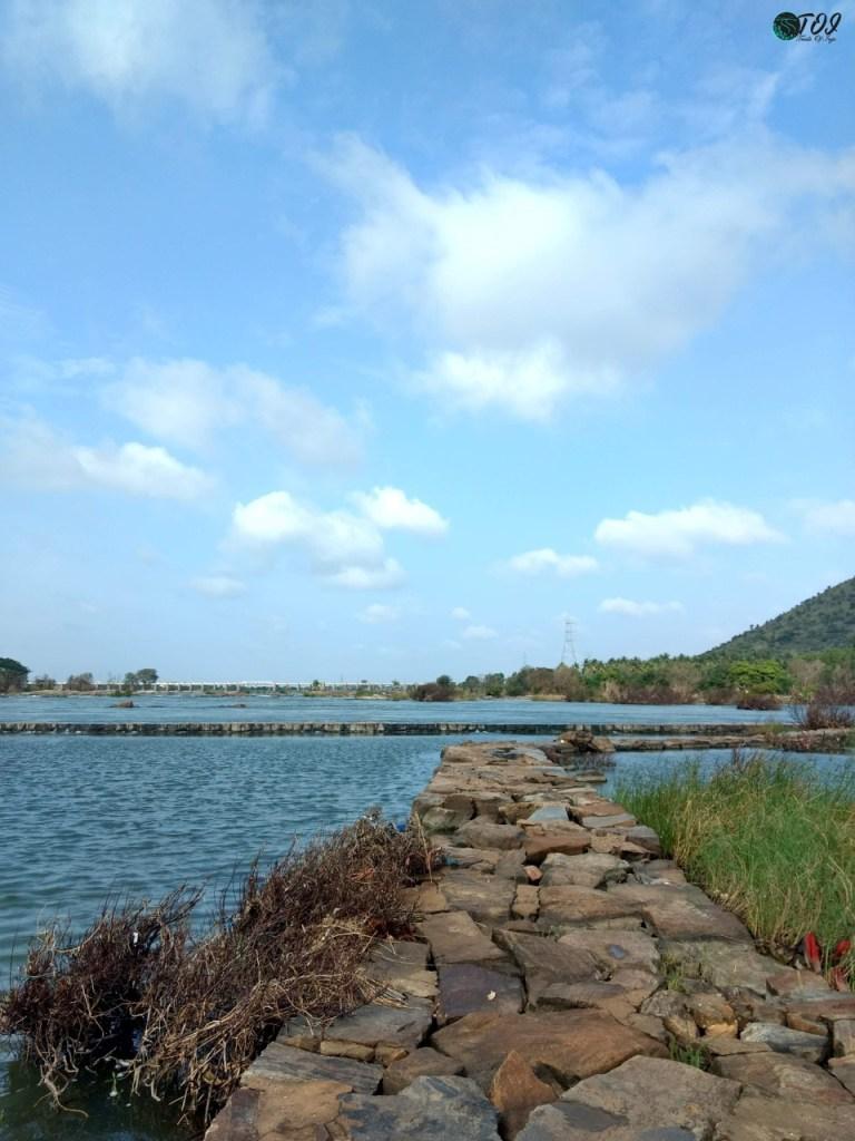 Stone Path For Fishermen at Shivanasamudra