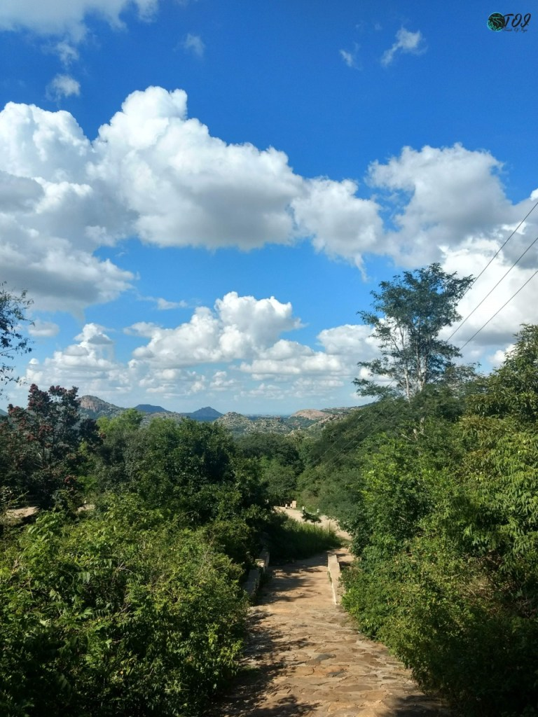 Hiking Path To Avalabetta Hilltop