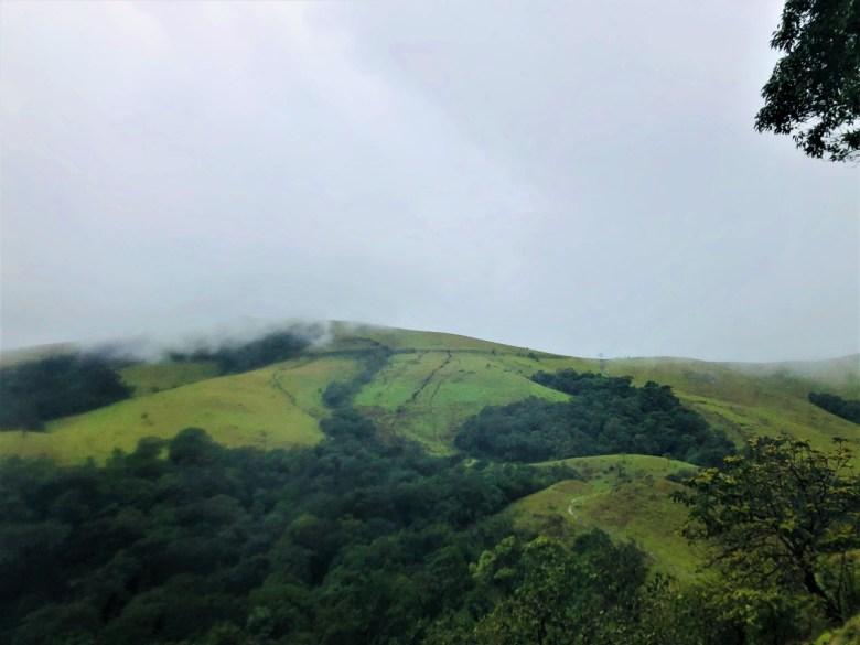 View Of Kodachadri Meadows From Everest Meadow
