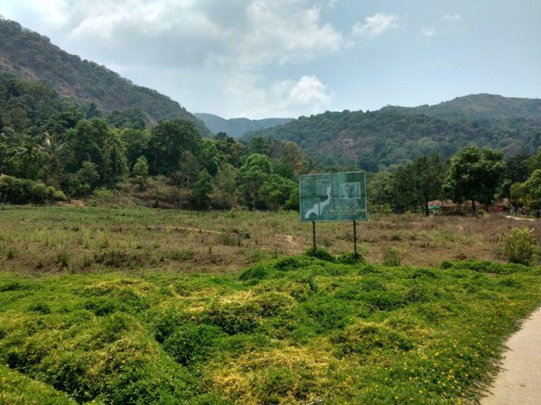 Brahmagiri Hills From Iruppu Falls Entrance