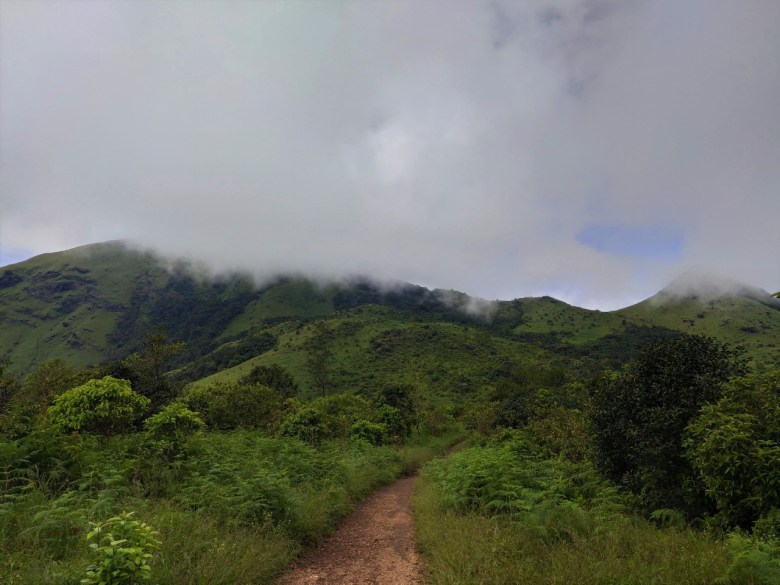 Flat Trails On Tadiandamol Trek