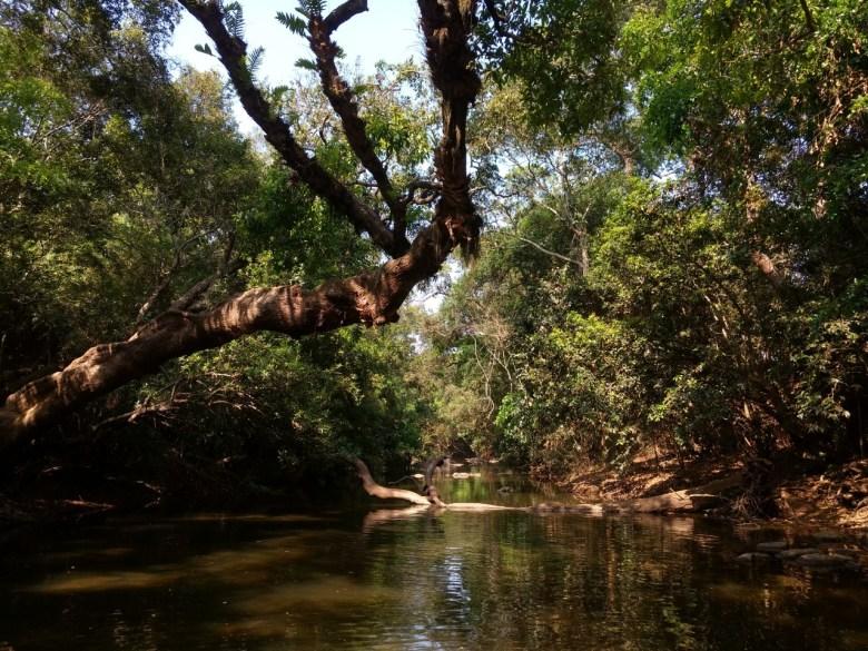 Grand Isolation At Kaveri Nisargadhama