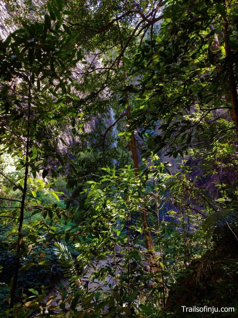 Hidden Kudlu Teertha Falls