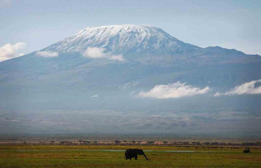 Kilimanjaro Marathon 2019 - Mars 2019