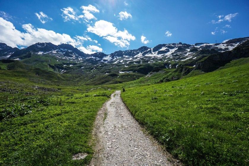Trail Views
