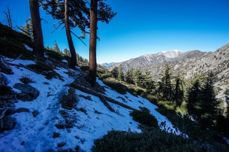 Mt. Baldy in View