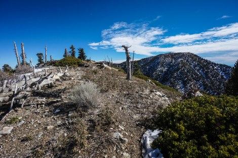 From Bighorn Peak