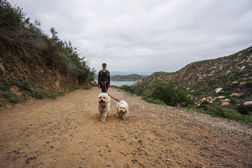 Little Mushers