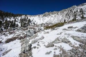Mt. Baldy via Ski Hut Trail 03.07.15