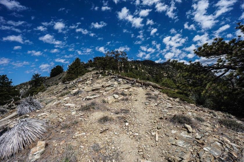 Iron Mountain via Heaton Flats