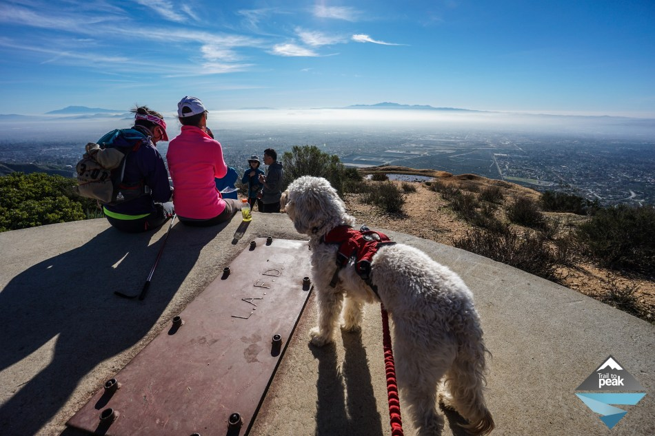11 Great SoCal Hikes To Help You Achieve Your 2016 Fitness Goals
