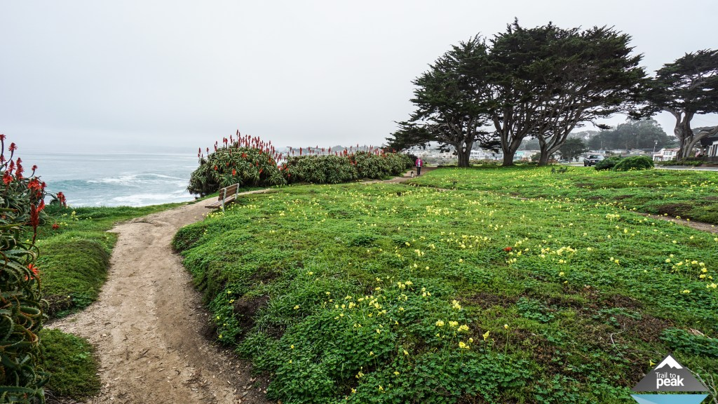 Monterey Pacific Grove Coastal Recreation Trail Hike Walk