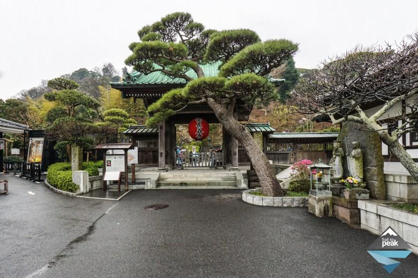 hasedera temple japan kamakura travel