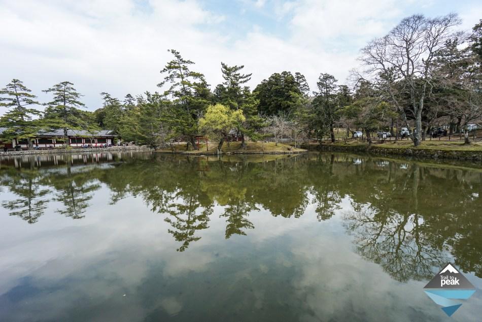 Nara Todaiji Temple Japan Kyoto