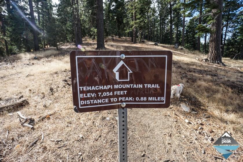 Hiking Tehachapi Mountain Trail Park