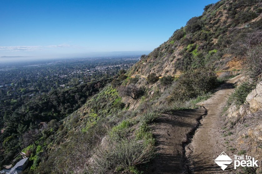 mt. wilson trail via sierra madre hike hiking guide