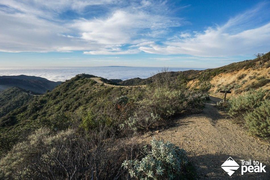 20 Photos That Will Make You Want Hike Around Catalina Island
