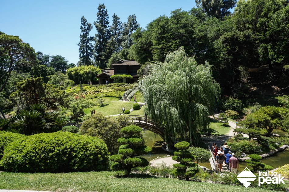 A Guide To The Huntington Botanical Gardens, Library, And Art ...