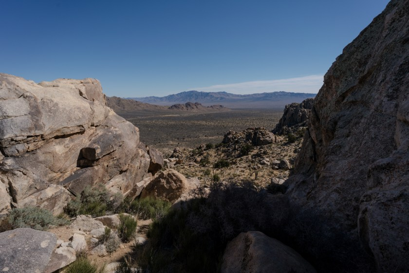 Hiking Teutonia Peak In Mojave National Preserve