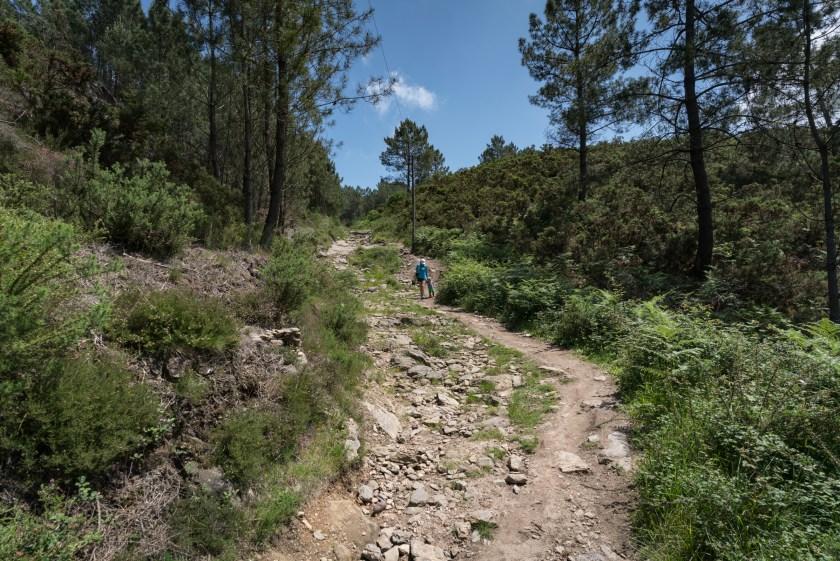 Camino Portuguese Day 4: Ponte de Lima to Rubiaes