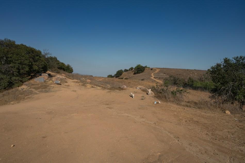 Hiking Eagle Scout Trail - Pomona, CA