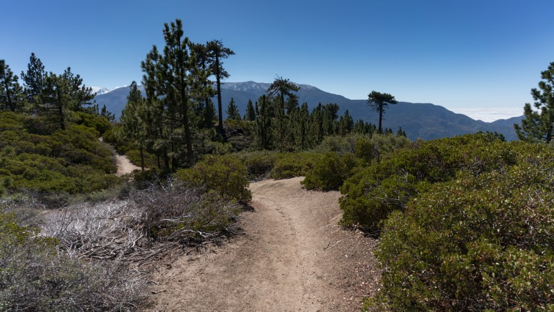 Hiking Pine Knot Trail To Grand View Point - Big Bear, CA