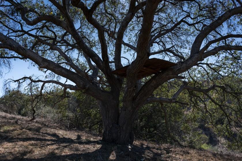 Hiking Magnolia Trail To Buzzard Peak - West Covina, CA