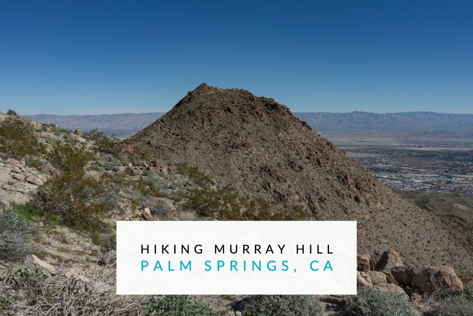 Hiking to Murray Hill (Peak) via Garstin and Clara Burgess Trails - Palm Springs, CA